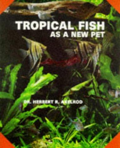 Tropical fish as a new pet