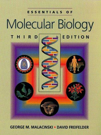 Download Essentials of molecular biology