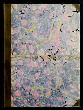 Cover of: A new book of ornaments | Antonio Visentini